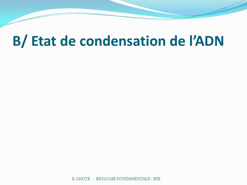 B/ Etat de condensation de l'ADN