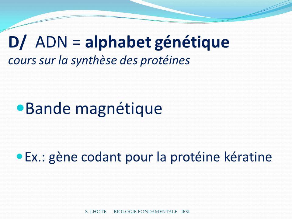 D/ ADN = alphabet génétique cours sur la synthèse des protéines