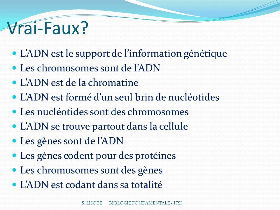 Vrai-Faux L'ADN est le support de l'information génétique