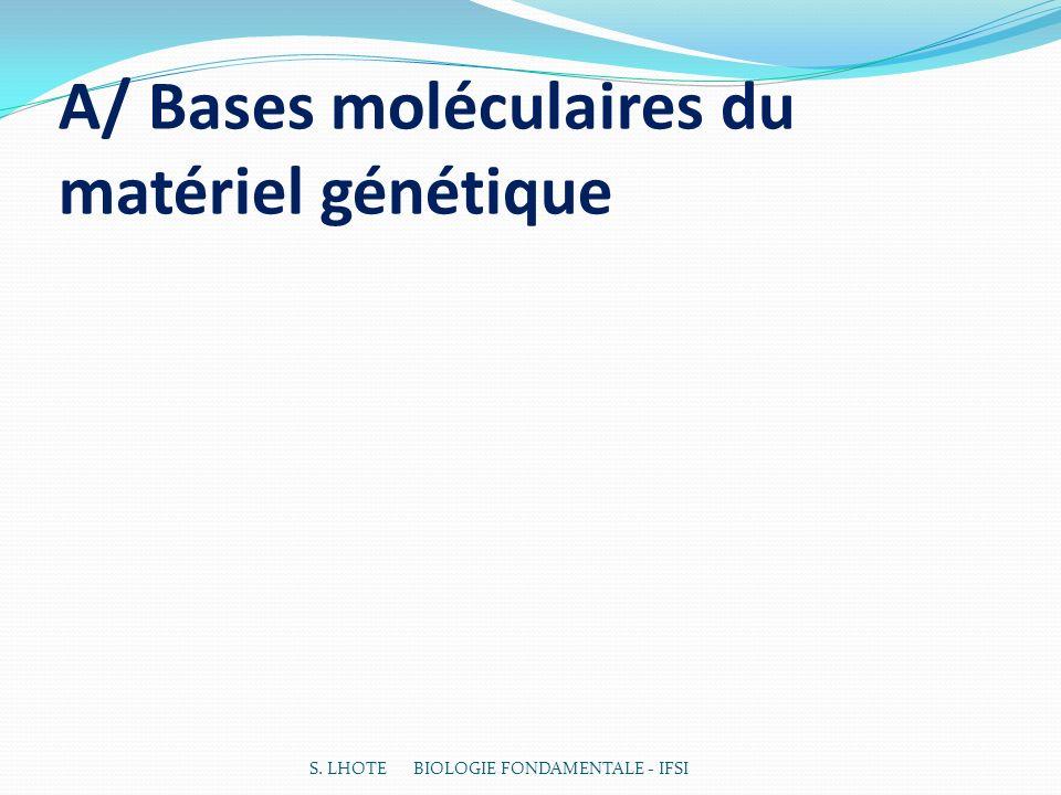 A/ Bases moléculaires du matériel génétique