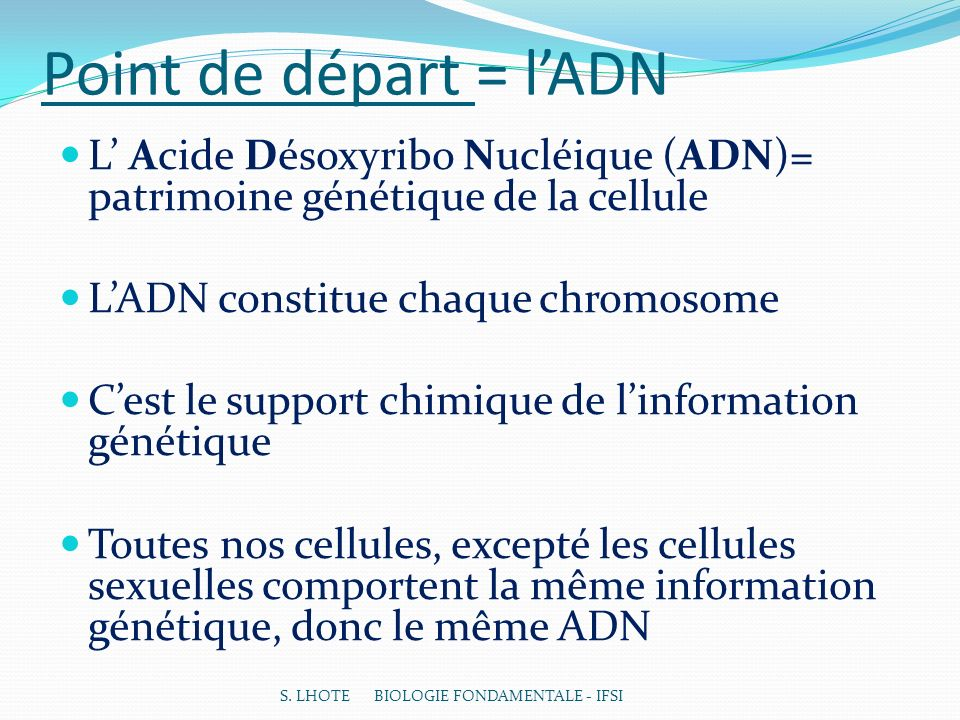 Point de départ = l'ADN L' Acide Désoxyribo Nucléique (ADN)= patrimoine génétique de la cellule. L'ADN constitue chaque chromosome.