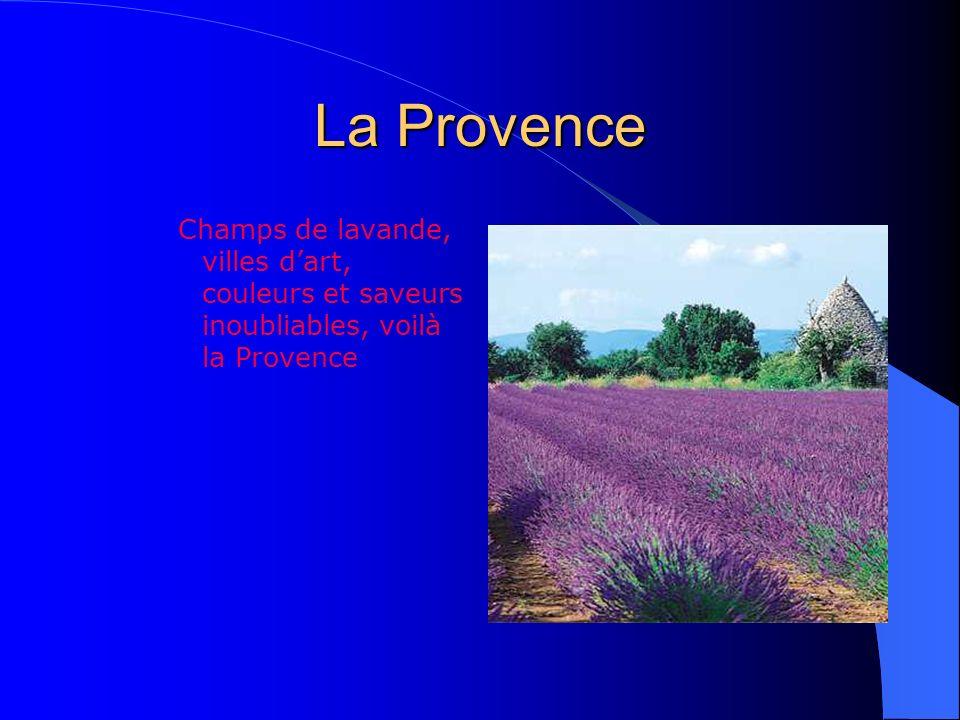 La Provence Champs de lavande, villes d'art, couleurs et saveurs inoubliables, voilà la Provence