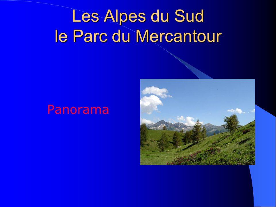 Les Alpes du Sud le Parc du Mercantour