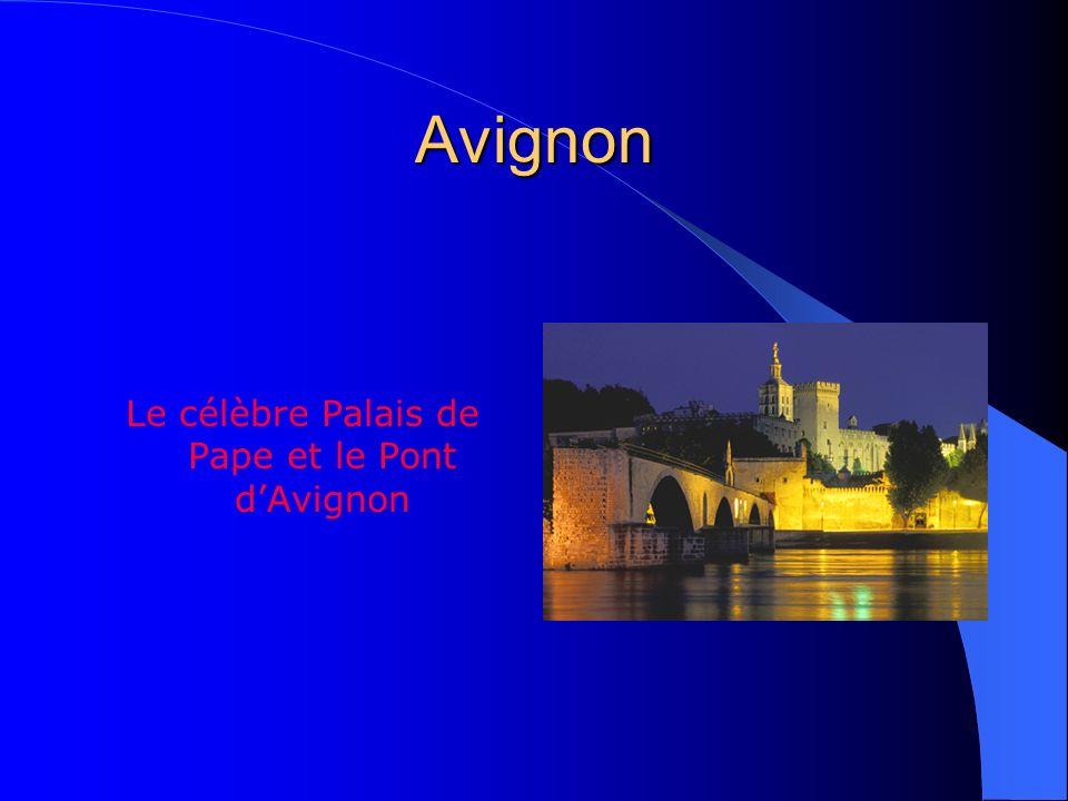 Le célèbre Palais de Pape et le Pont d'Avignon