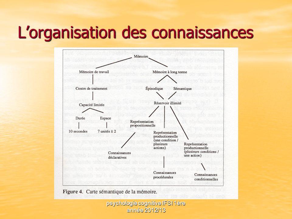 L'organisation des connaissances