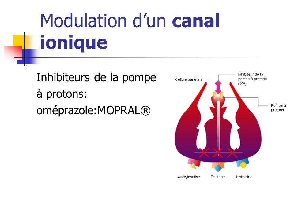 Modulation d'un canal ionique