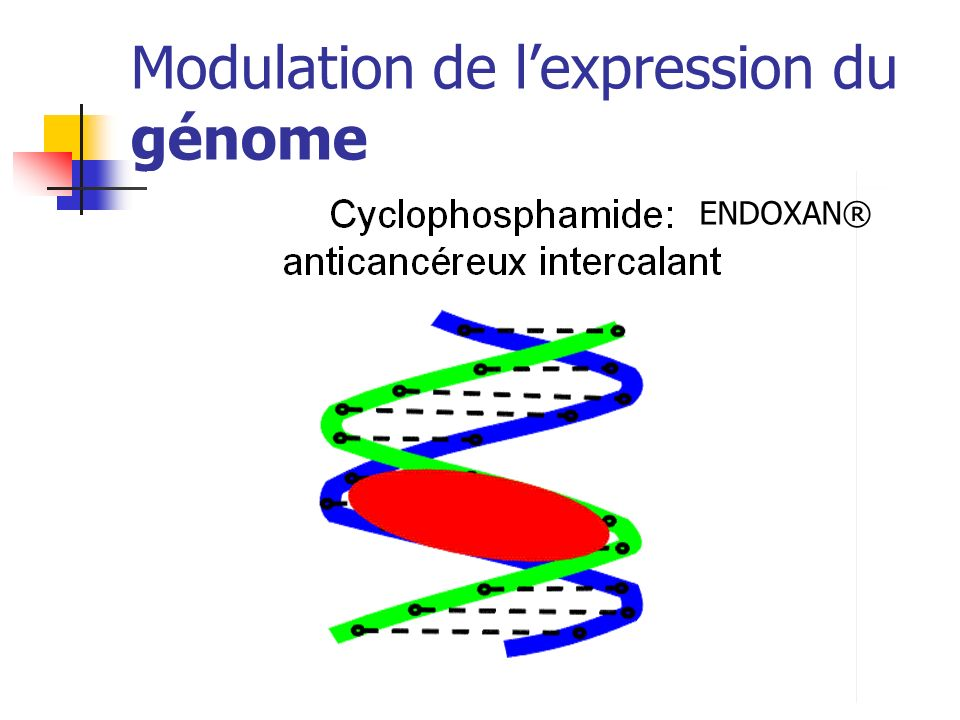 Modulation de l'expression du génome