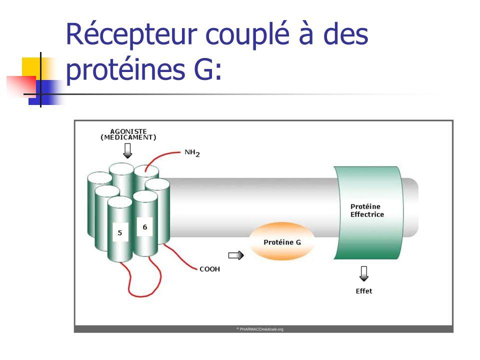Récepteur couplé à des protéines G: