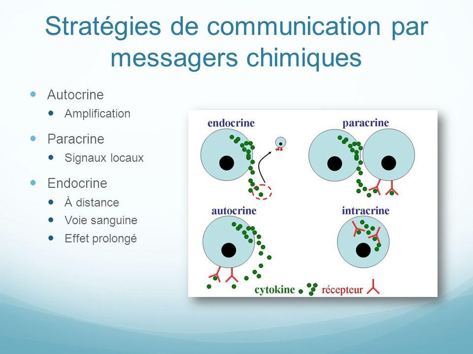 Stratégies de communication par messagers chimiques