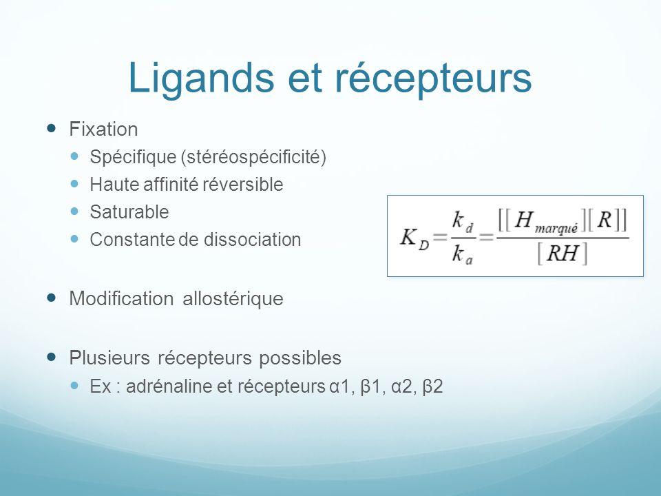 Ligands et récepteurs Fixation Modification allostérique