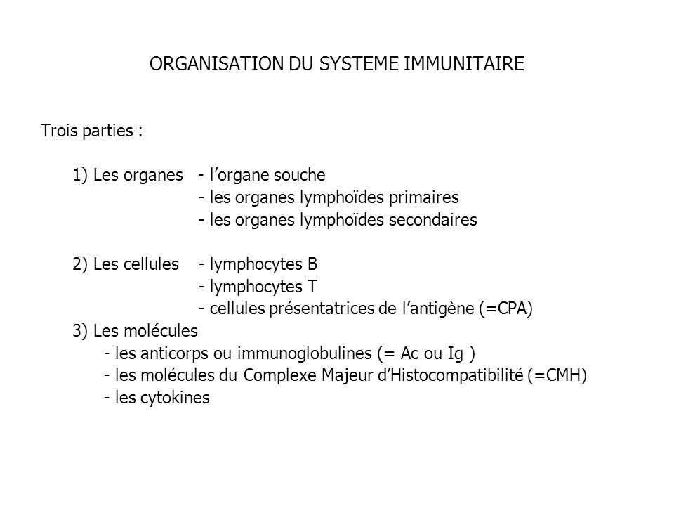 ORGANISATION DU SYSTEME IMMUNITAIRE