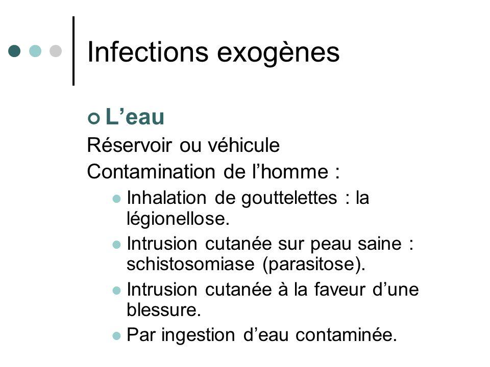 Infections exogènes L'eau Réservoir ou véhicule