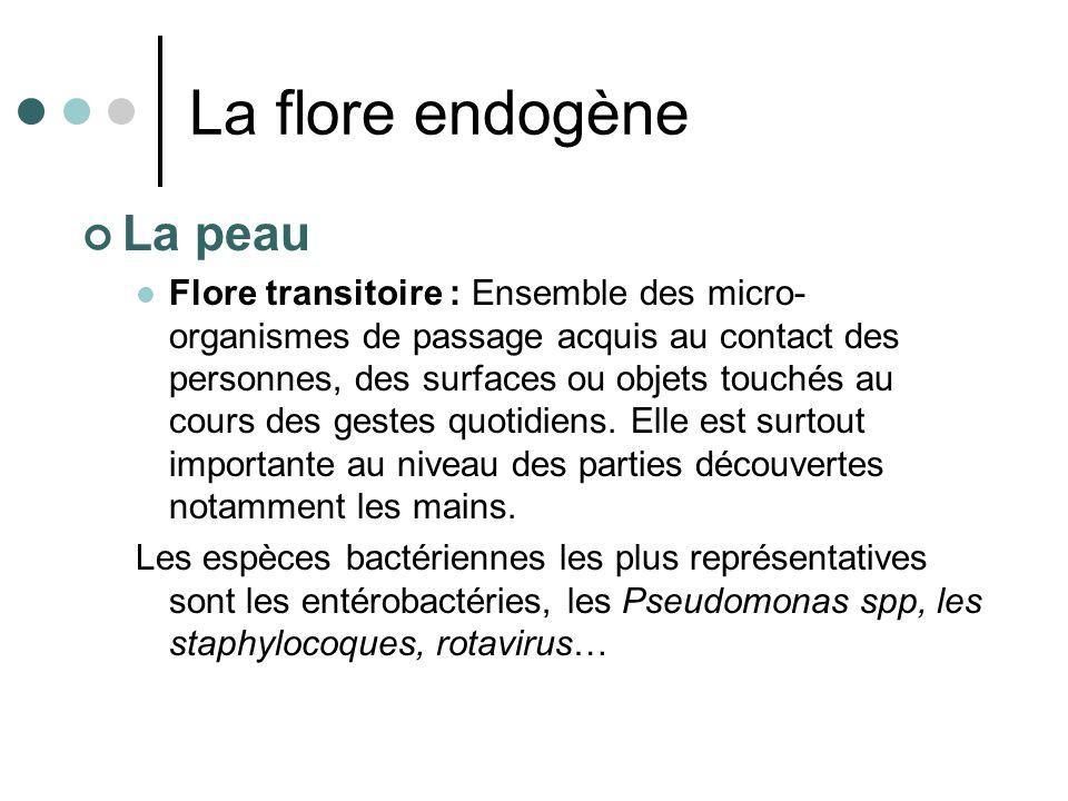 La flore endogène La peau