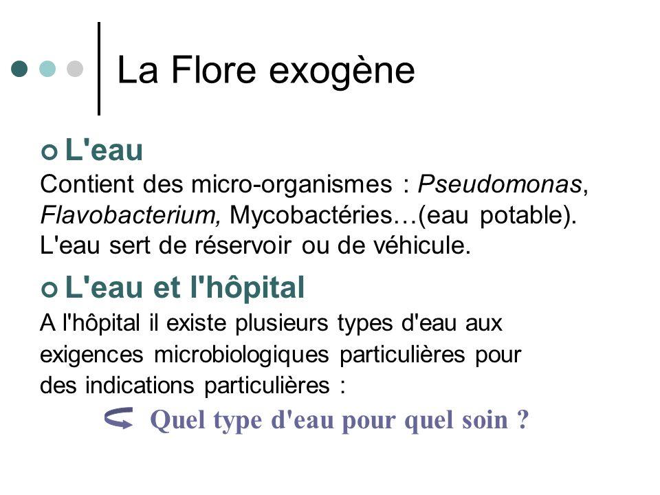 La Flore exogène L eau L eau et l hôpital