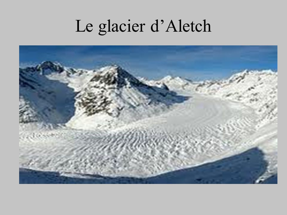 Le glacier d'Aletch