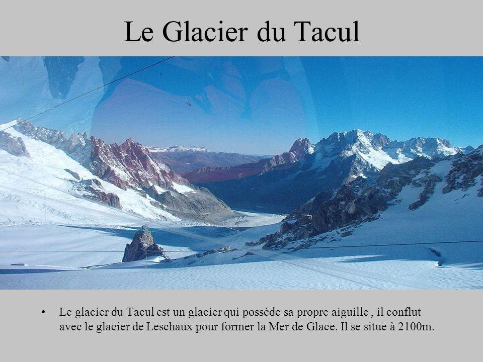 Le Glacier du Tacul