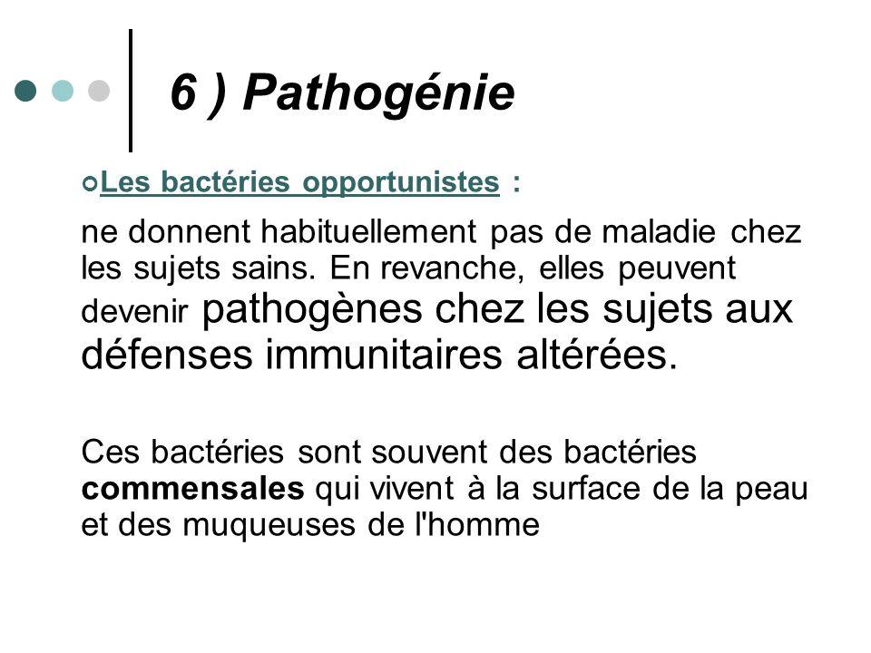 6 ) Pathogénie Les bactéries opportunistes :