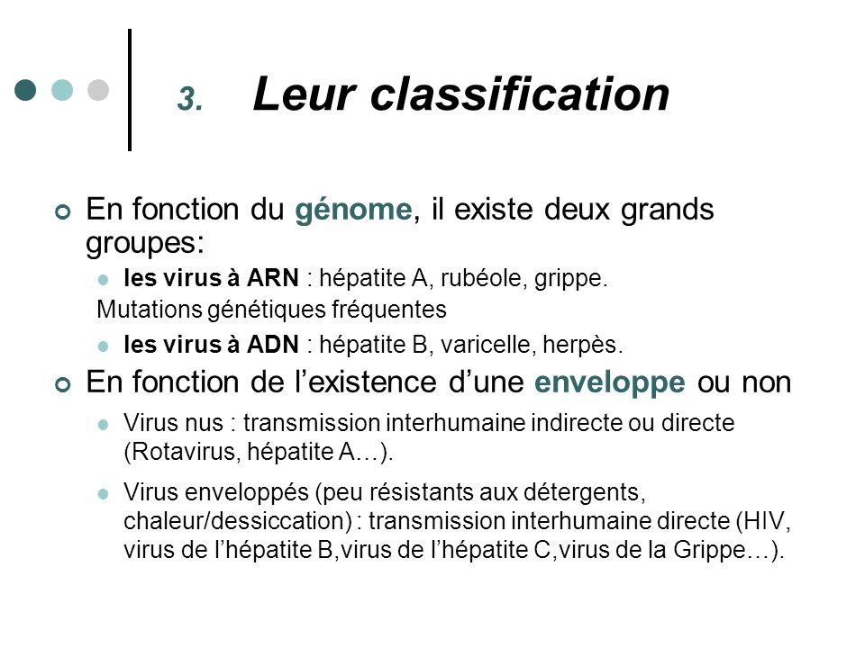 Leur classification En fonction du génome, il existe deux grands groupes: les virus à ARN : hépatite A, rubéole, grippe.