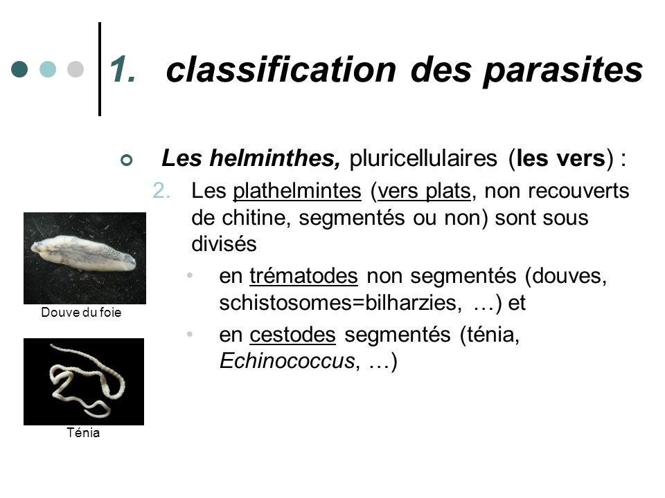 classification des parasites