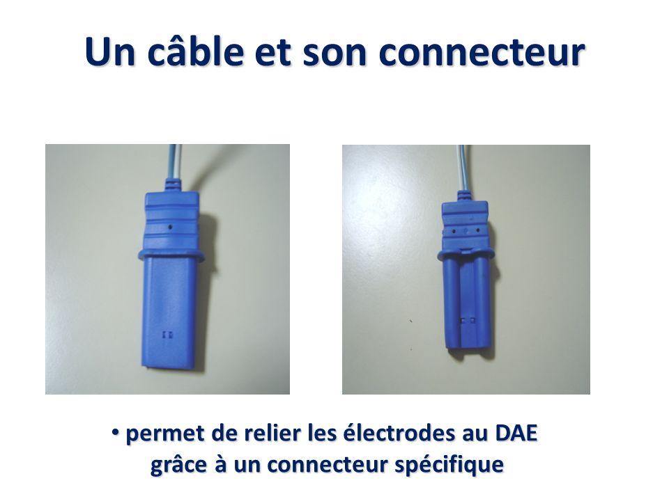 Un câble et son connecteur