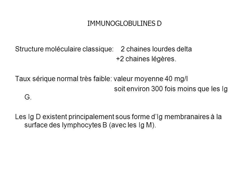 IMMUNOGLOBULINES D Structure moléculaire classique: 2 chaines lourdes delta. +2 chaines légères.