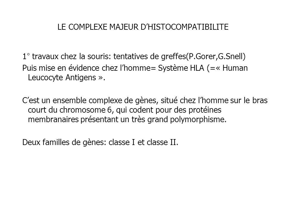 LE COMPLEXE MAJEUR D'HISTOCOMPATIBILITE