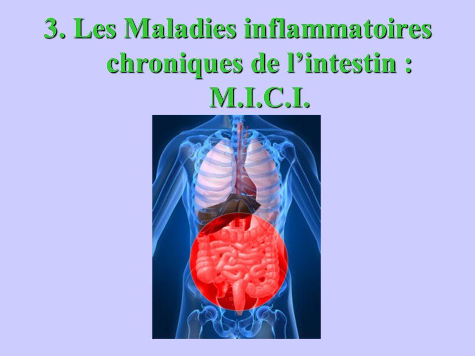 3. Les Maladies inflammatoires chroniques de l'intestin : M.I.C.I.