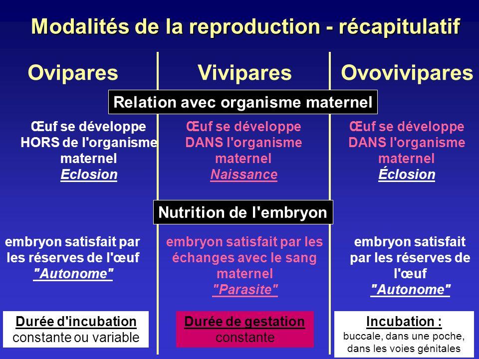 Modalités de la reproduction - récapitulatif
