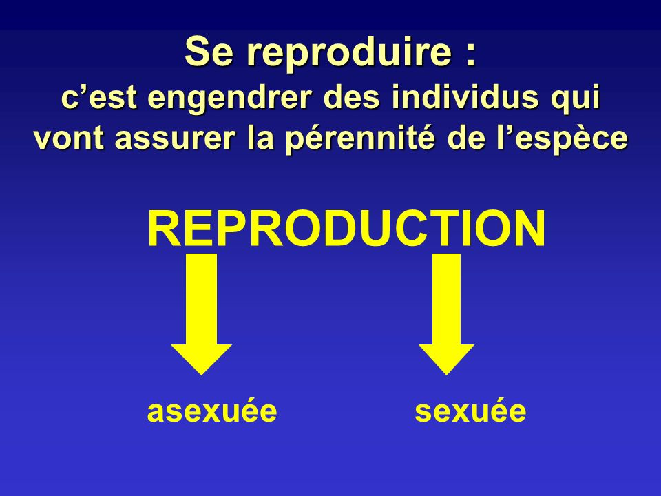REPRODUCTION Se reproduire :
