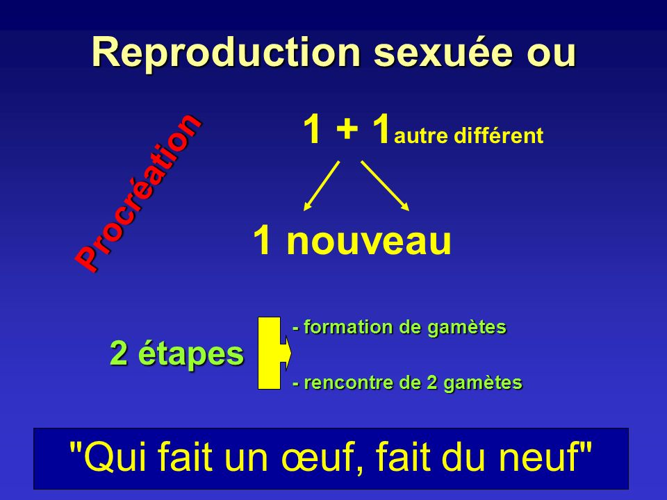 Reproduction sexuée ou