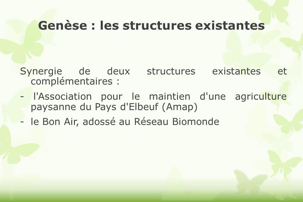 Genèse : les structures existantes