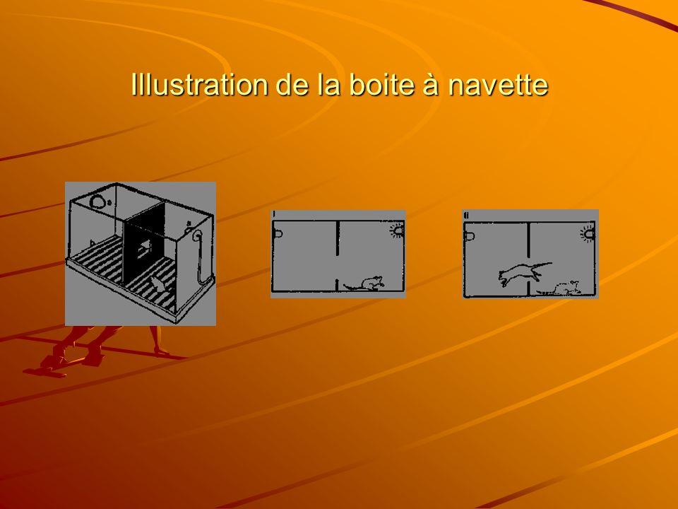 Illustration de la boite à navette