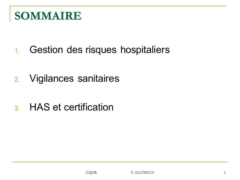 SOMMAIRE Gestion des risques hospitaliers Vigilances sanitaires