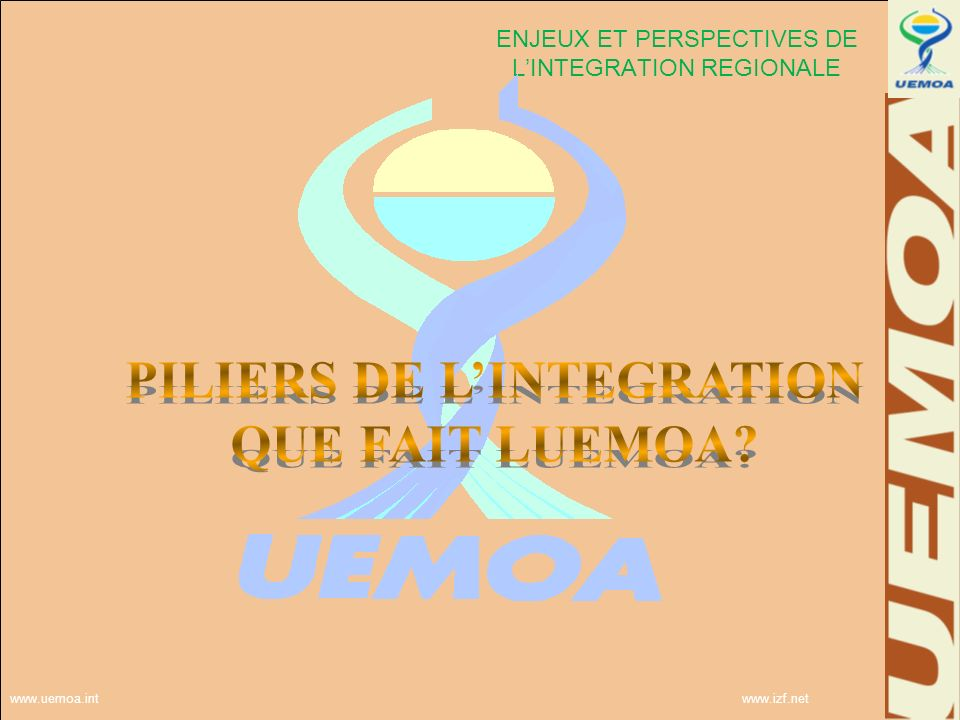 ENJEUX ET PERSPECTIVES DE L'INTEGRATION REGIONALE