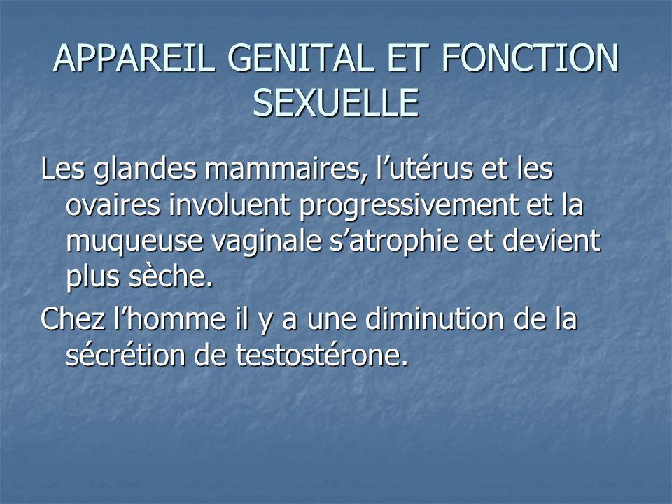 APPAREIL GENITAL ET FONCTION SEXUELLE