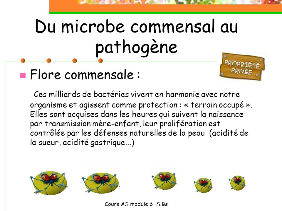 Du microbe commensal au pathogène