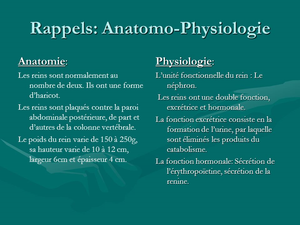 Rappels: Anatomo-Physiologie