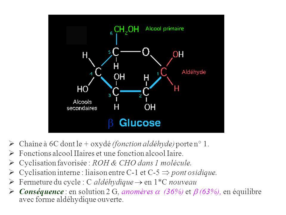  Chaîne à 6C dont le + oxydé (fonction aldéhyde) porte n° 1.