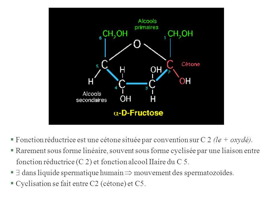 Fonction réductrice est une cétone située par convention sur C 2 (le + oxydé).