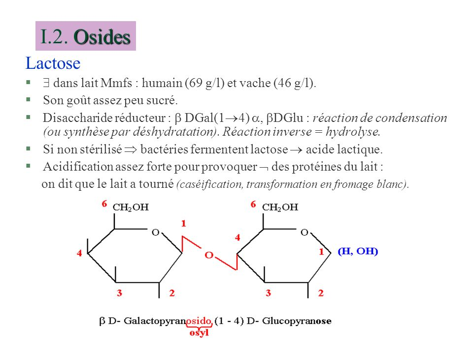 I.2. Osides Lactose.  dans lait Mmfs : humain (69 g/l) et vache (46 g/l). Son goût assez peu sucré.