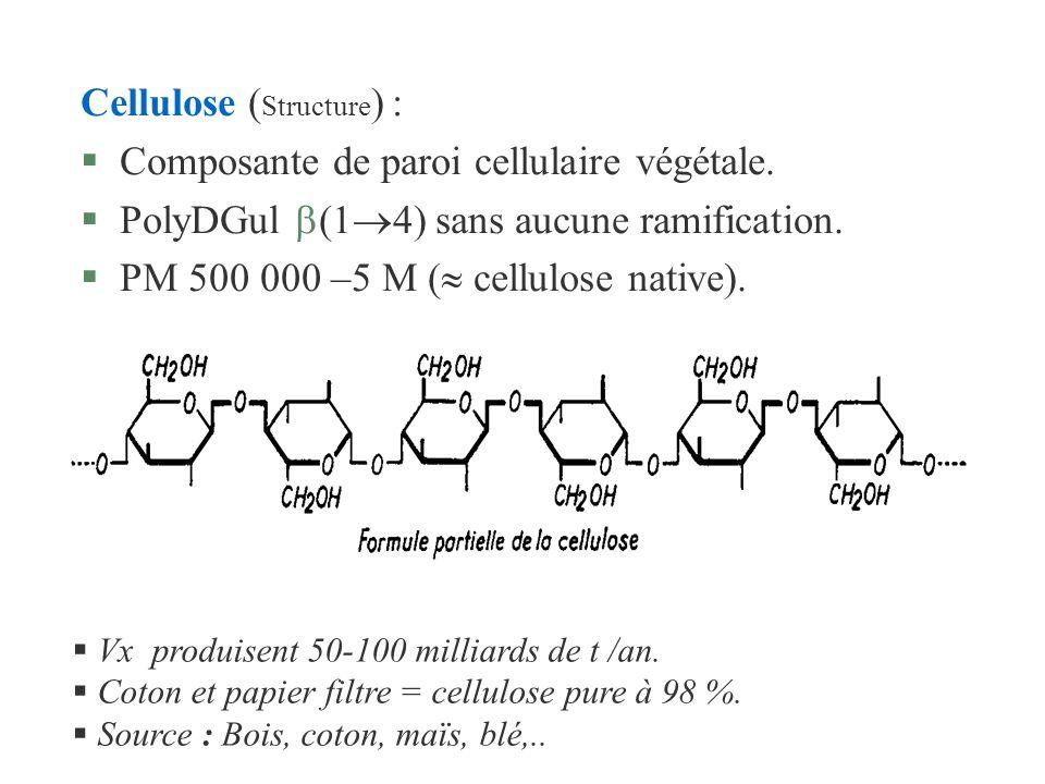 Cellulose (Structure) : Composante de paroi cellulaire végétale.