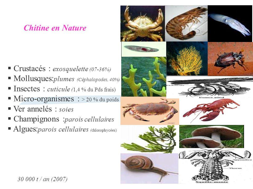 Crustacés : exosquelette (07-36%)