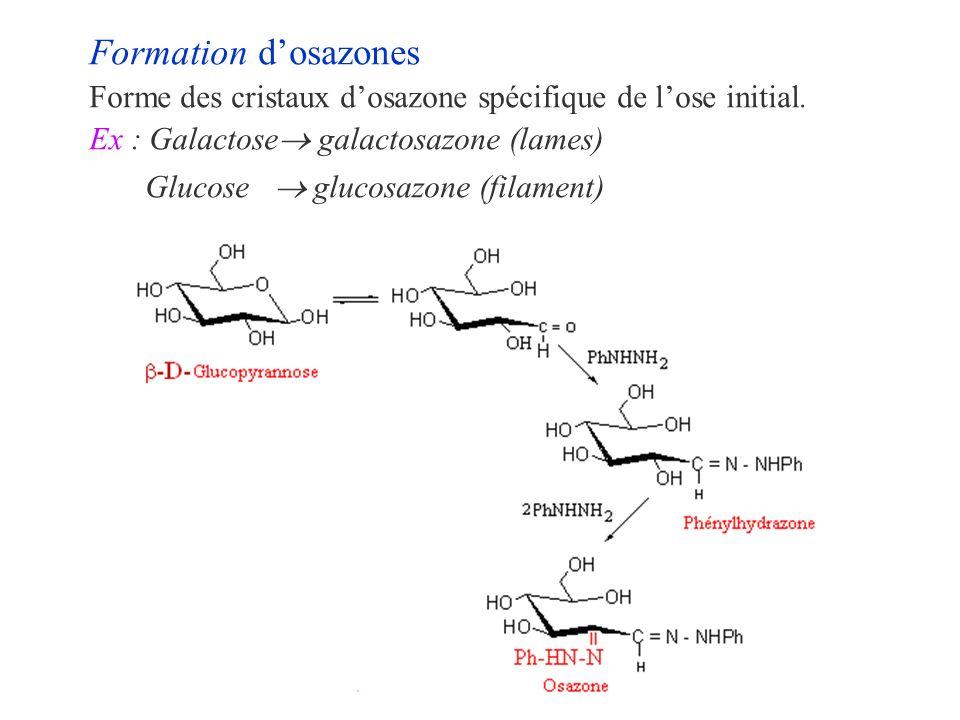 Formation d'osazones Forme des cristaux d'osazone spécifique de l'ose initial. Ex : Galactose galactosazone (lames)