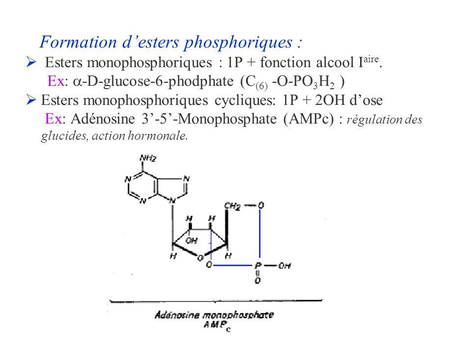 Formation d'esters phosphoriques :