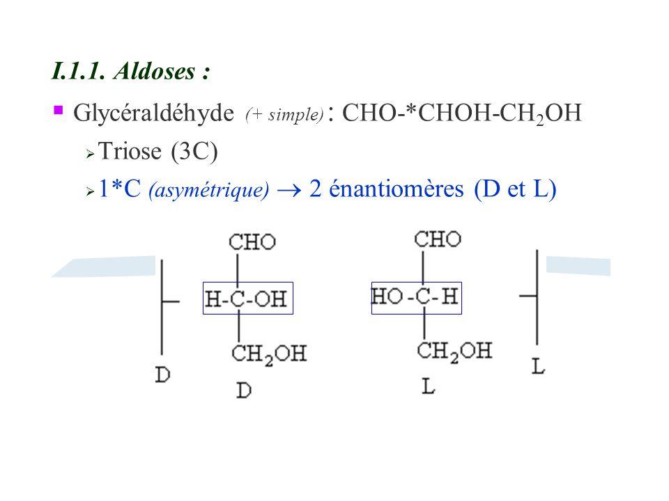 Glycéraldéhyde (+ simple) : CHO-*CHOH-CH2OH