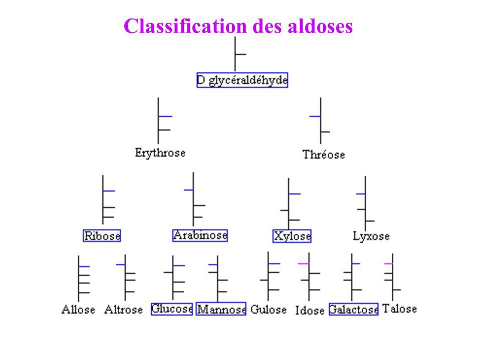 Classification des aldoses