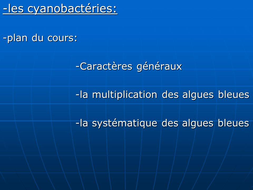 -les cyanobactéries: -plan du cours: -Caractères généraux