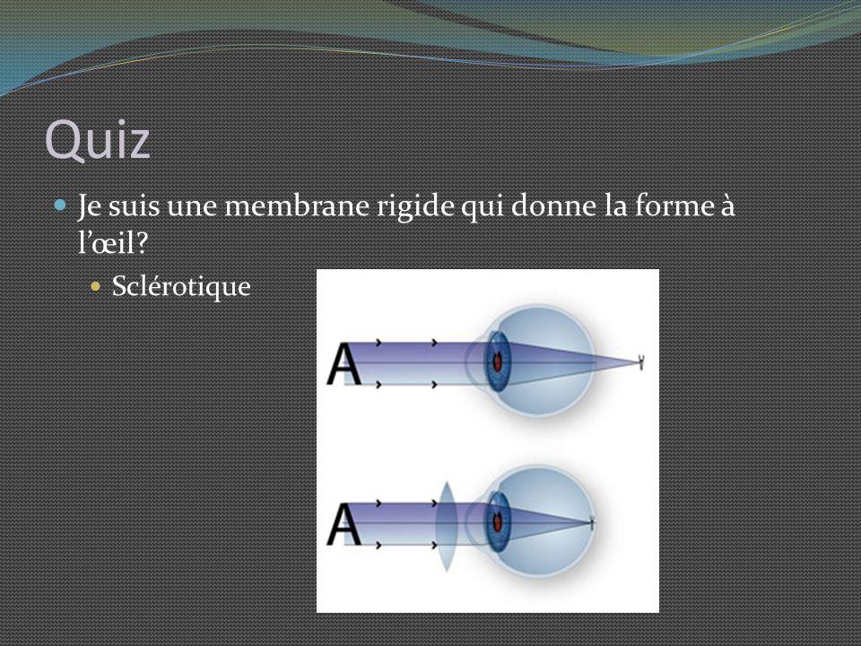 Quiz Je suis une membrane rigide qui donne la forme à l'œil