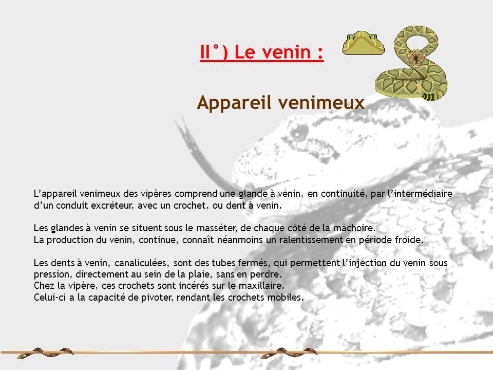 II°) Le venin : Appareil venimeux