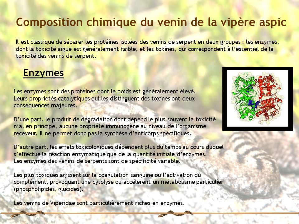 Composition chimique du venin de la vipère aspic